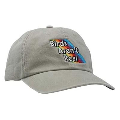 Birds Aren't Real Rainbow Hat