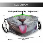 Funny Cat Face Mask With Filter Pocket Washable Face Bandanas Balaclava Reusable Fabric Mask With 2 Pcs Filters